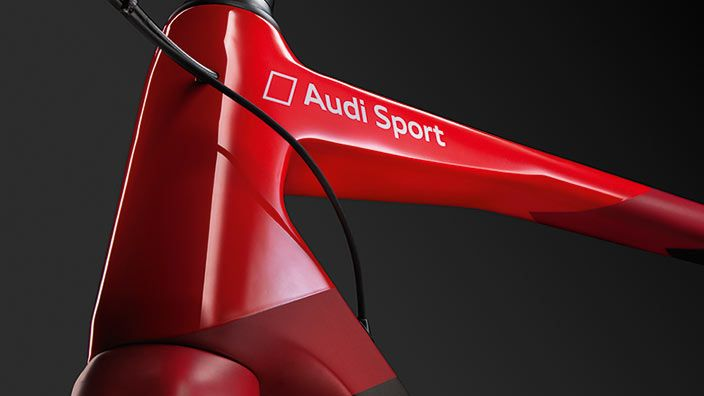 Audi Sport Racing Bike bike
