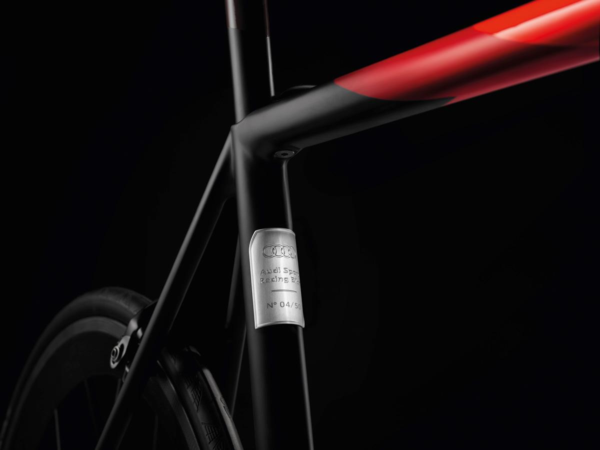 Audi Sport Racing Bike frame